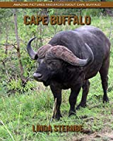 Cape Buffalo: Amazing Pictures and Facts About Cape Buffalo