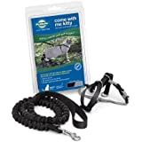 PetSafe Come with Me Kitty Harness and Bungee Leash, Harness for Cats, Small, Black/Silver