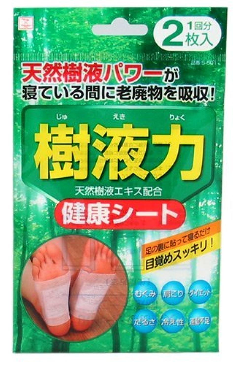 先祖ベックスヒューズ小久保(Kokubo) 樹液力 健康シート 2枚入 (台紙)【まとめ買い12個セット】 S-601