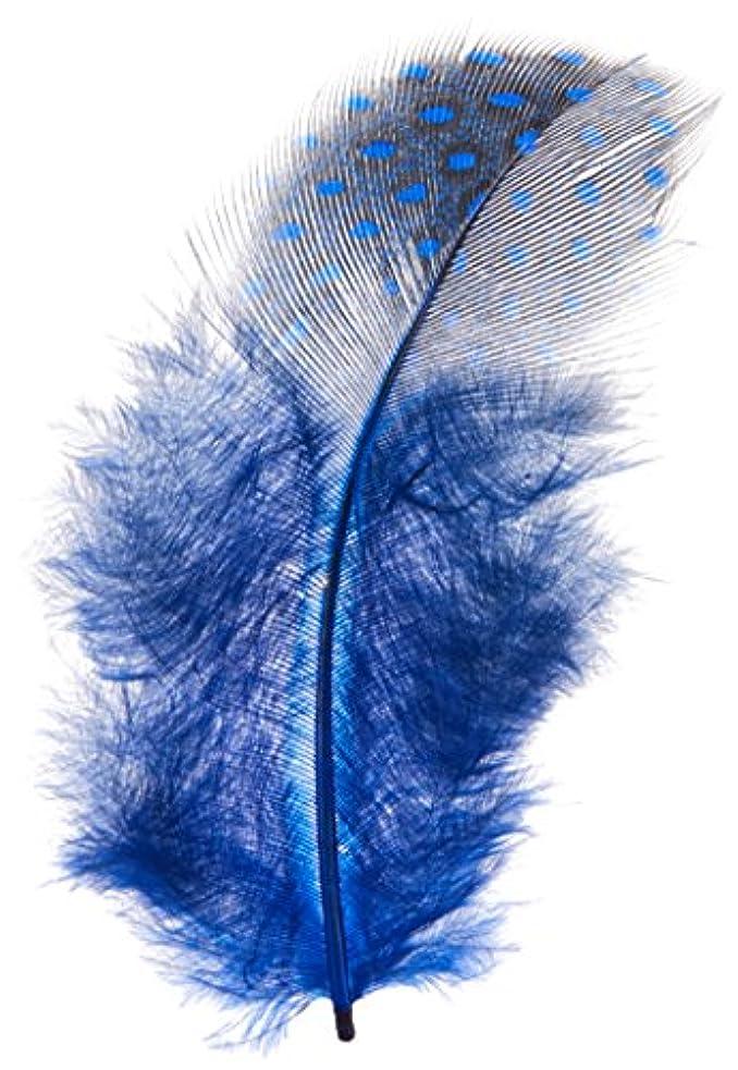 宝石触覚不規則な天然フェザー ブルー