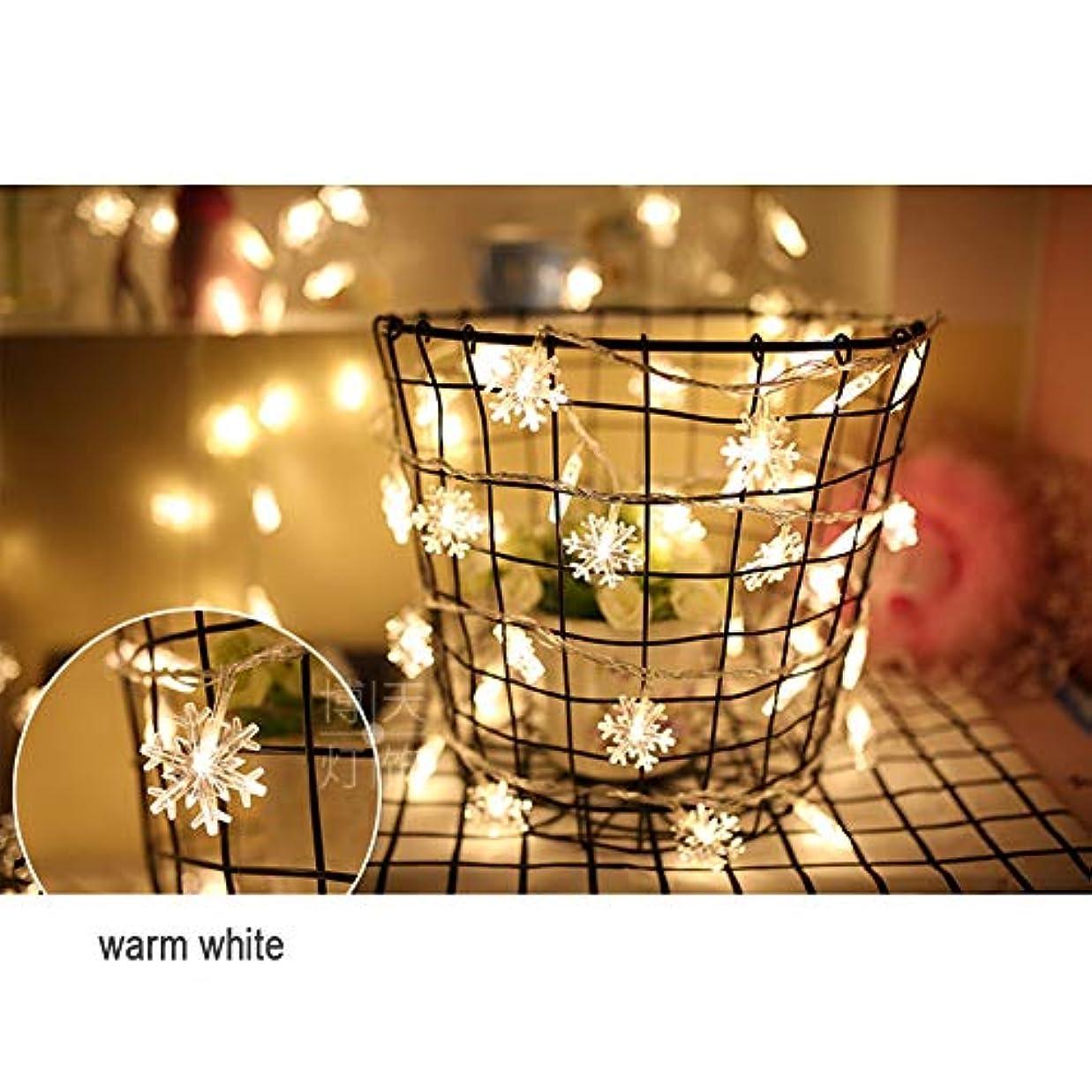電池式 ストリングライト - 防雨型 2 スノーフレークLEDイルミネ ーションライト ロマンチックな雰囲気を作る屋外用 ワイヤーライト イルミネーションライト、庭、パティオ、バルコニ、ークリスマス