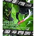 大型インコ・オウムカレンダー 2014 ~人と共に暮らす賢くて美しい大型インコ・オウム達~鳥写真