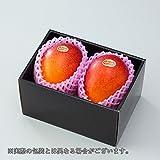 マンゴー 宮崎県産 完熟マンゴー 風のいたずら (訳あり) 2Lサイズ 2玉入り