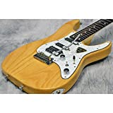 Schecter シェクター / BH-I-STD-24F Natural/R