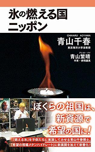 氷の燃える国ニッポン (ワニブックスPLUS新書)の詳細を見る