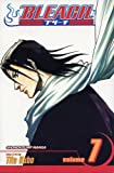 Bleach, Vol. 7: The Broken Coda