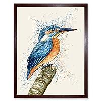 Kingfisher Watercolour Art Print Framed Poster Wall Decor 12X16 Inch キング水彩ポスター壁デコ
