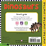 Dinosaurs: With More Than 30 Stickers (Smart Kids) 画像