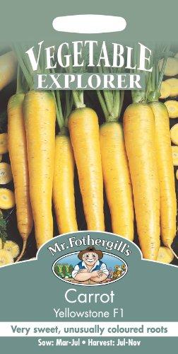 MFVX 英国ミスターフォザーギルズシード Vegetables Explorer Carrot Yellowstone F1 ベジタブル・エキスプローラー・キャロット・イエローストーン・F1