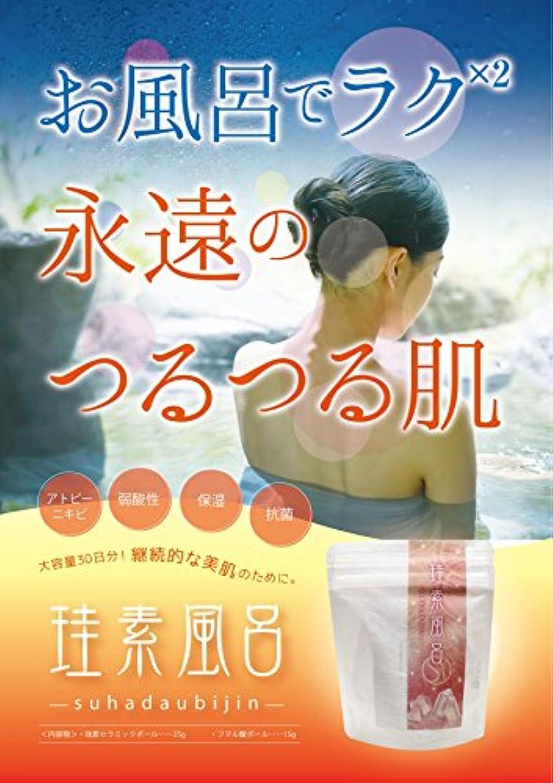 ベンチャー固有の明日珪素風呂-suhadabijin-