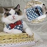 Lalawow 猫用 ハーネス リード付  胴輪  キャンバス 可愛いドッド 散歩 ベルクロ ベスト (M, ブルー)