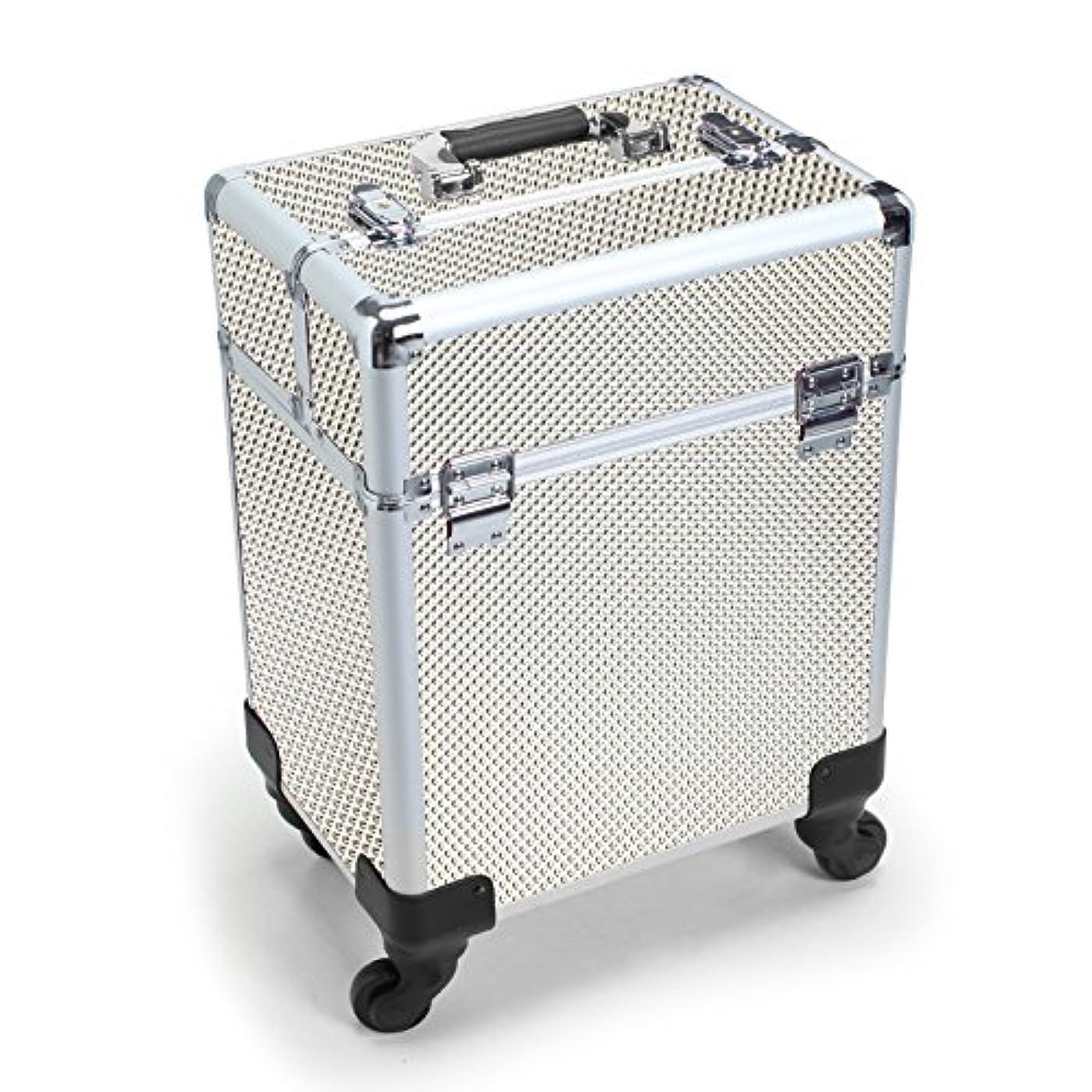 請求書逆説所持MCTECH キャリーケース レバー式 メイクボックス 美容師用 スーツケース型 化粧品 プロ用 薬箱 救急箱 収納 キャスター付き カギ付き 超大型メイクケース ジルバー