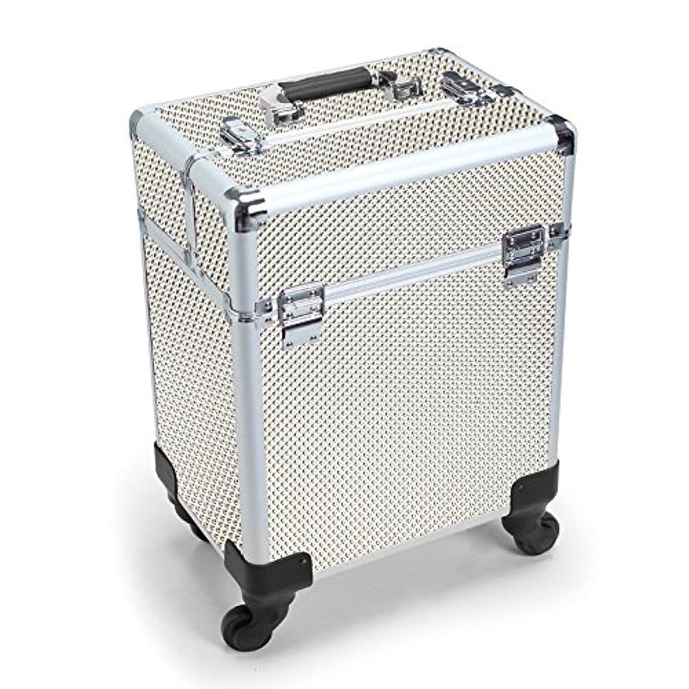 解くしっかり集めるMCTECH キャリーケース レバー式 メイクボックス 美容師用 スーツケース型 化粧品 プロ用 薬箱 救急箱 収納 キャスター付き カギ付き 超大型メイクケース ジルバー