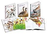 復刊・薮内正幸日本の野鳥セット