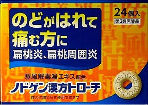 (医薬品画像)ノドゲン漢方トローチ