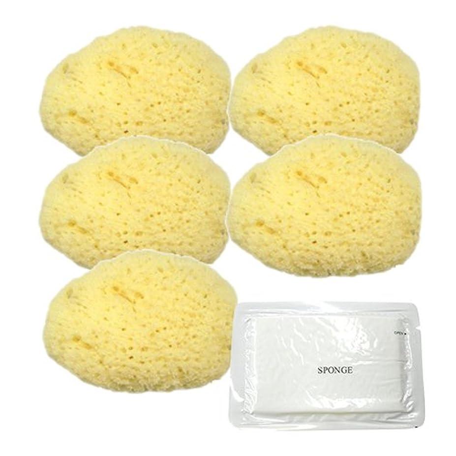 秀でる人口バケツユタカ 天然海綿スポンジ(フェイススポンジ) 大 × 5個 + 圧縮スポンジセット