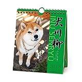 アートプリントジャパン 2018年 犬川柳カレンダー(週めくり) No.005 1000093338