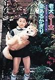 老犬クー太 命あるかぎり―ある校長先生一家と過ごした十八年 (ドキュメンタル童話・犬シリーズ)