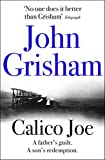 Calico Joe (English Edition)