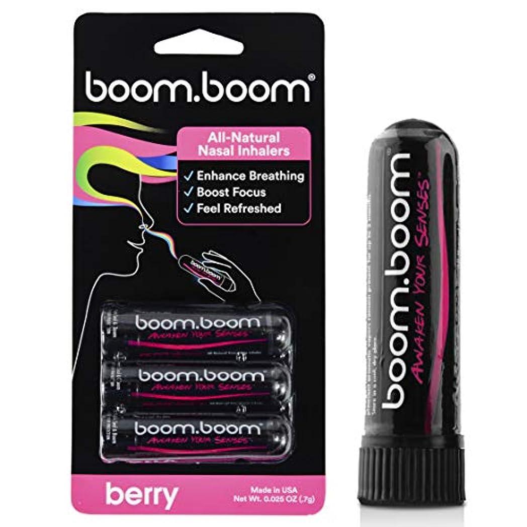 安いですうまれた以下アロマテラピー鼻吸入器(3パック)by BoomBoom   すべての自然植物療法エッセンシャルオイル気化器  Stuffy Noseからのインスタントリリーフ  素晴らしいフレーバーメントール、ペパーミント、ユーカリ(バラエティーパック) (ラズベリー+ブラックベリー+イチゴ)