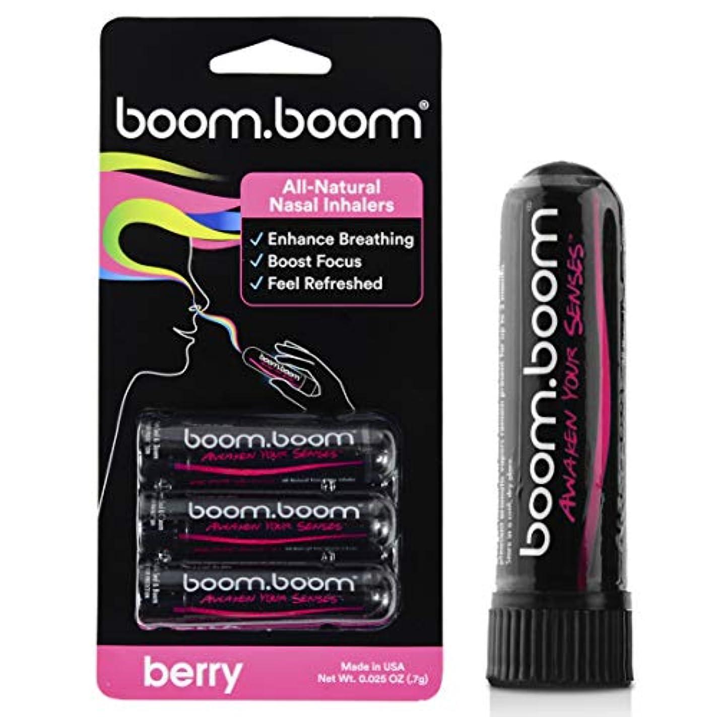 現像行脊椎アロマテラピー鼻吸入器(3パック)by BoomBoom | すべての自然植物療法エッセンシャルオイル気化器| Stuffy Noseからのインスタントリリーフ| 素晴らしいフレーバーメントール、ペパーミント、ユーカリ(バラエティーパック) (ラズベリー+ブラックベリー+イチゴ)
