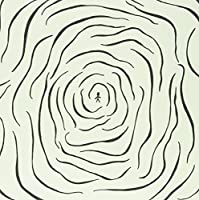 A Hallucination [12 inch Analog]