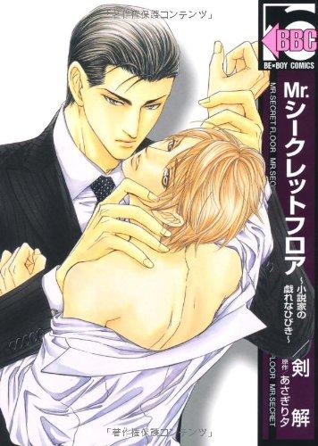 Mr.シークレットフロア~小説家の戯れなひびき (ビーボーイコミックス)の詳細を見る