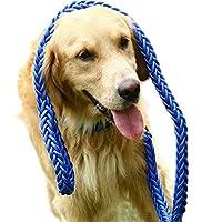 UCCU プレミアム リード リッグリード 犬用引きヒモ ペット用品 小型犬/中型犬/大型犬 牽引ロープ お散歩 訓練 お出かけ用 ロングリード 2M 【ブルー】 便利