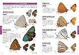 日本の昆虫1400 (1) チョウ・バッタ・セミ (ポケット図鑑) 画像
