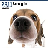 THE DOG ビーグル  2011年カレンダー 画像
