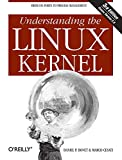 Understanding the Linux Kernel: From I/O Ports to Process Management