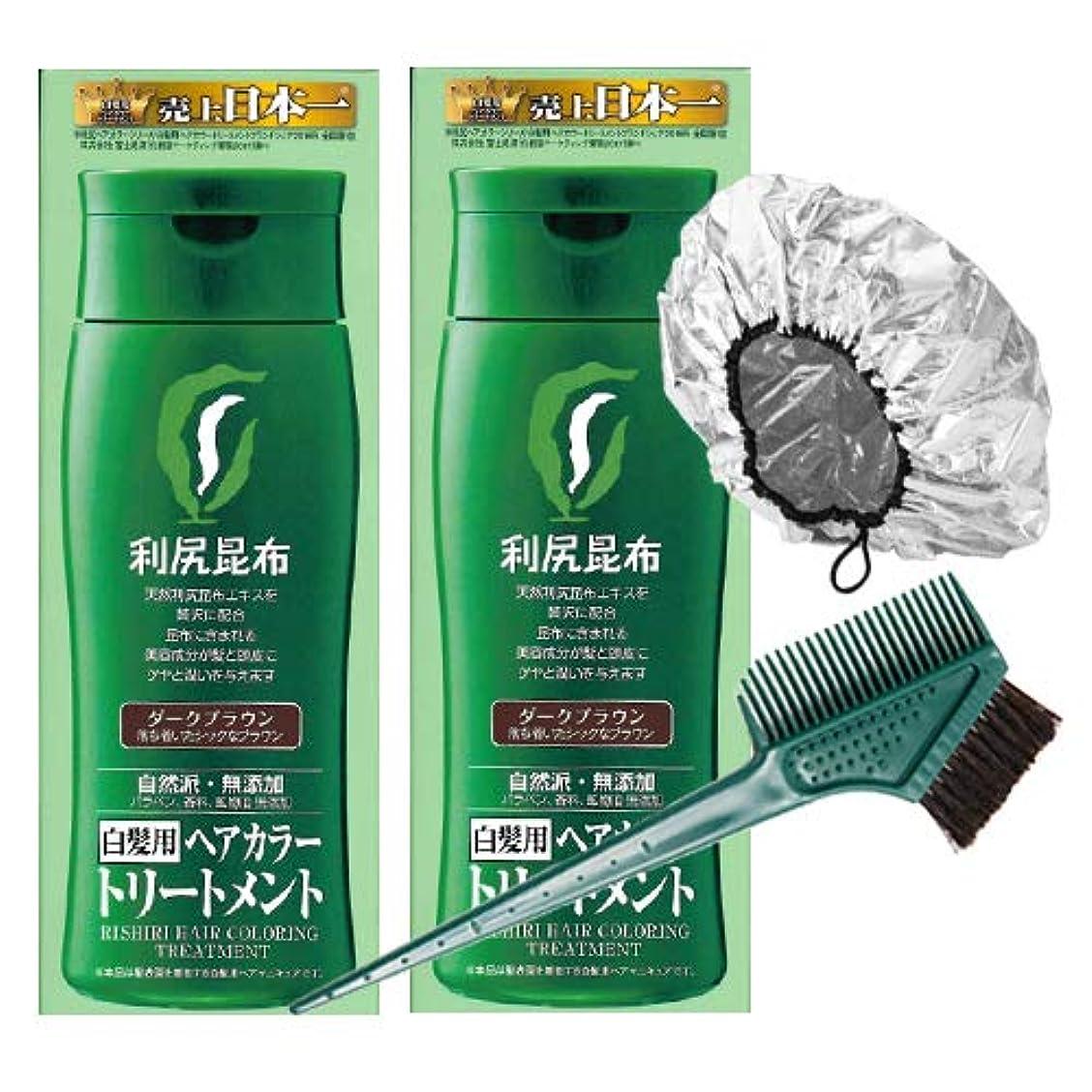 アヒルアラブサラボする必要がある利尻ヘアカラートリートメント白髪染め 200g×2本(ダークブラウン)&馬毛100%毛染めブラシ&専用キャップセット