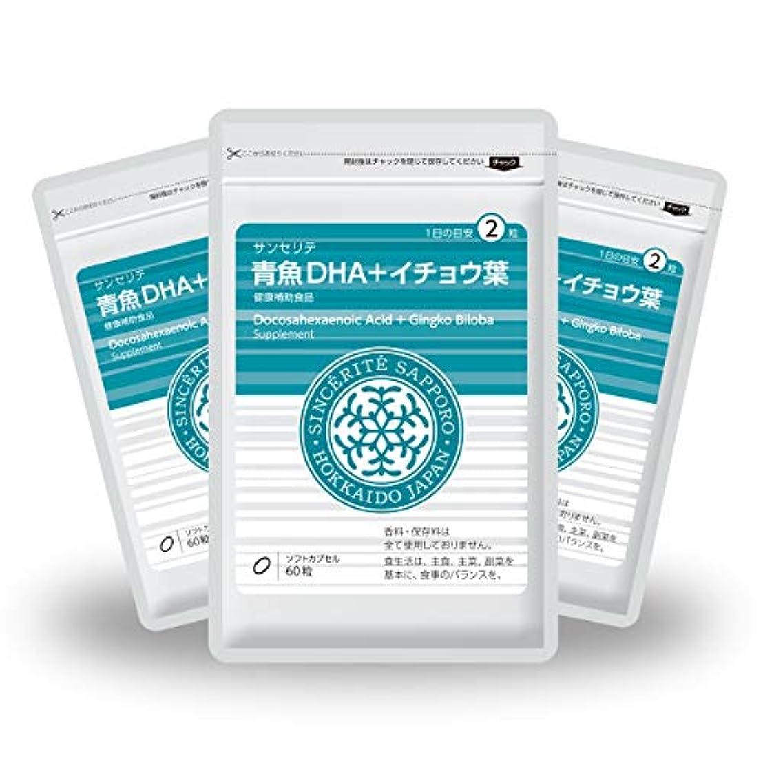 日食概要段落青魚DHA+イチョウ葉 3袋セット[送料無料][DHA]101mg配合[国内製造]お得な90日分