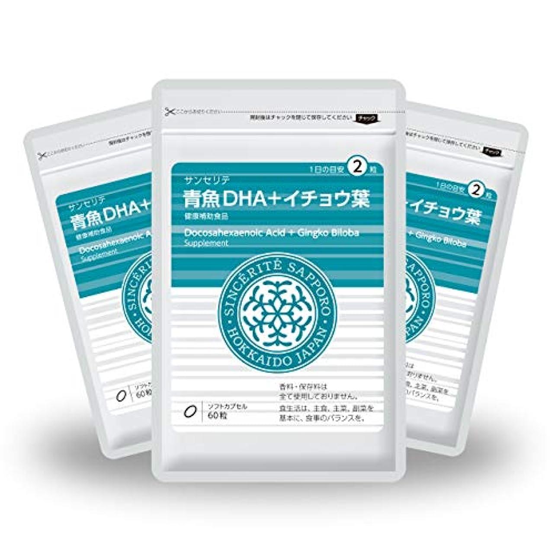 強化ソーダ水痛み青魚DHA+イチョウ葉 3袋セット[送料無料][DHA]101mg配合[国内製造]お得な90日分