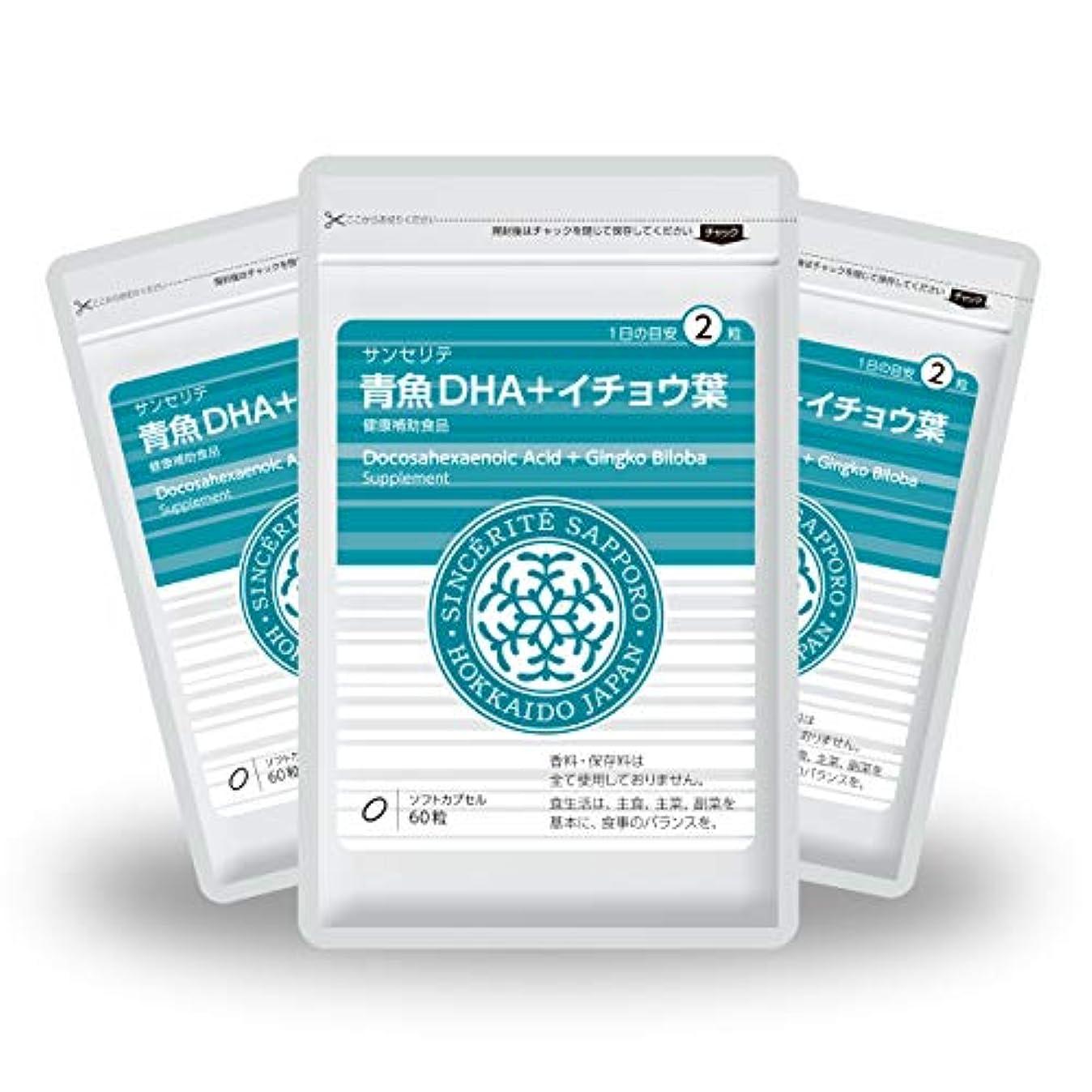 パイプエントリぞっとするような青魚DHA+イチョウ葉 3袋セット[送料無料][DHA]101mg配合[国内製造]お得な90日分