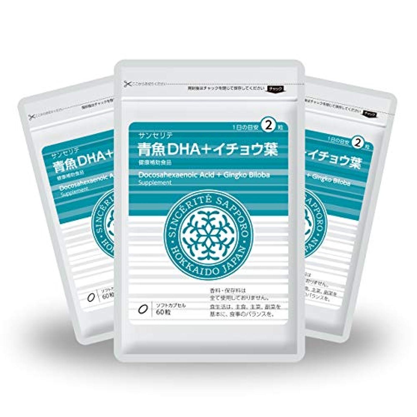 槍びっくりする慣らす青魚DHA+イチョウ葉 3袋セット[送料無料][DHA]101mg配合[国内製造]お得な90日分