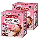 【まとめ買い】めぐりズム蒸気でホットアイマスク 無香料 12枚入×2