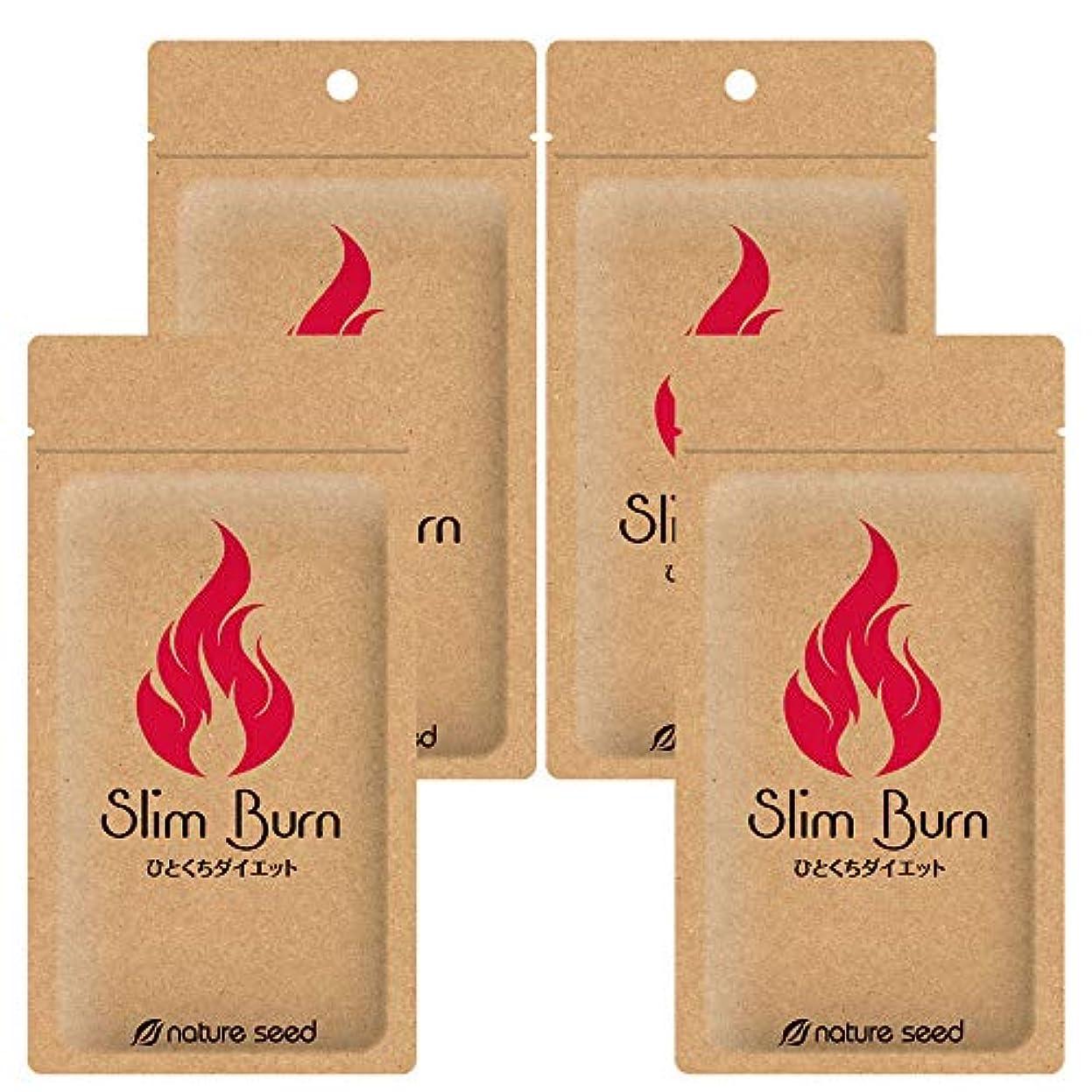 不規則なたとえ赤[燃焼サポートサプリ]ダイエット くびれメイク サプリメント スリムバーン 4袋(約120日分)