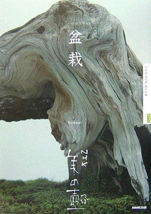 盆栽 (NHK美の壺) [単行本] / NHK「美の壺」制作班 (編集); 日本放送出版協会 (刊)