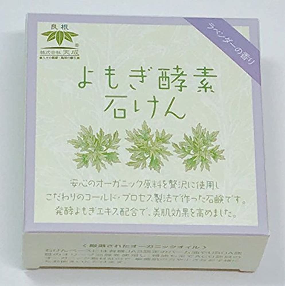 用量誤ってメガロポリスよもぎ酵素石けん(ラベンダーの香り)