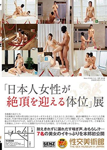 「日本人女性が絶頂を迎える体位」展 性交美術館 [DVD]