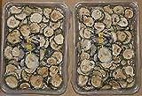 乾燥ゴーヤ(真空)45グラム  2袋セット 鹿児島産