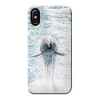 (ティアラ) Tiara iPhone 5/5s iphone5s ケース 海 サマー ジャンプするイルカ 薄型 スマホ ハードケース 海 A 各社共通 C000104_01