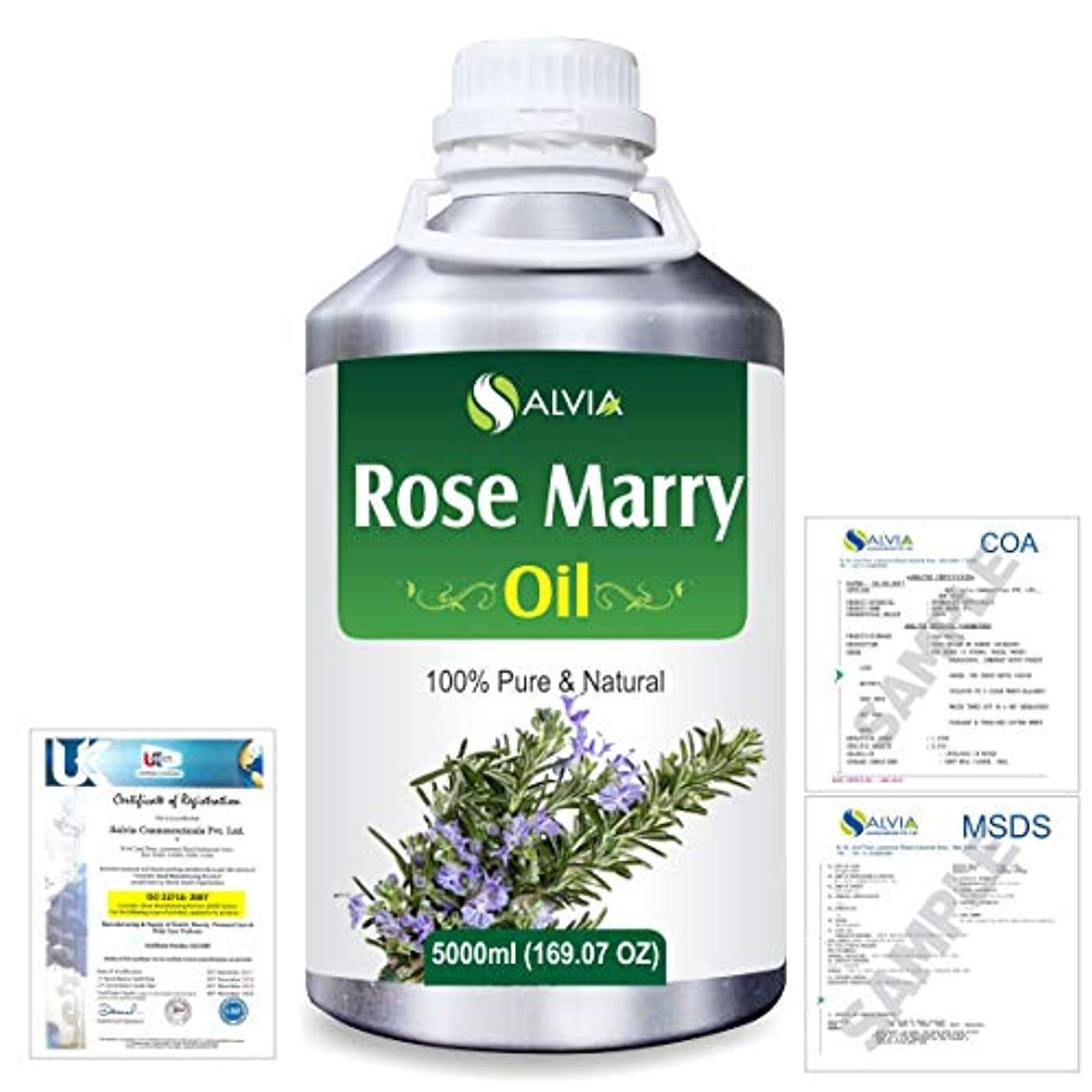 長さ実際の週末Rose Marry (Rosmarinus officinalis) 100% Natural Pure Essential Oil 5000ml/169fl.oz.
