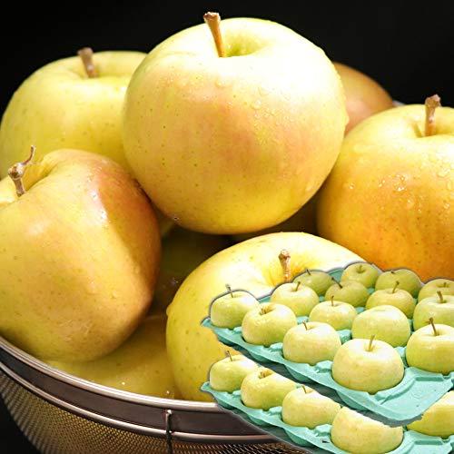 青森 りんご 10kg箱 トキ 家庭用 青森県産リンゴ10キロ箱 大小混合