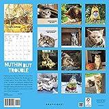 Nuthin' but Trouble 2020 Calendar 画像