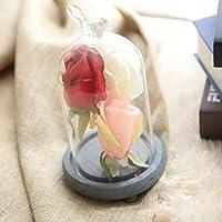 EOZY 枯れない花 造花 薔薇 プレゼント ローズ 結婚式 母の日 花嫁置物 インテリア フラワー 卓上装飾 アレンジメント 観賞植物 ホワイト