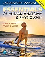 Essentials of Human Anatomy & Physiology Laboratory Manual (7th Edition) [並行輸入品]