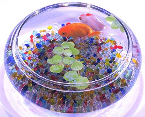 ジュン (JUN) ガラスベース Gセット(ガラス製容器+ロメイサンド/ジュエリーミックス)