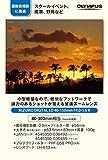 OLYMPUS 望遠ズームレンズ M.ZUIKO DIGITAL ED 40-150mm F4.0-5.6 R シルバー 画像